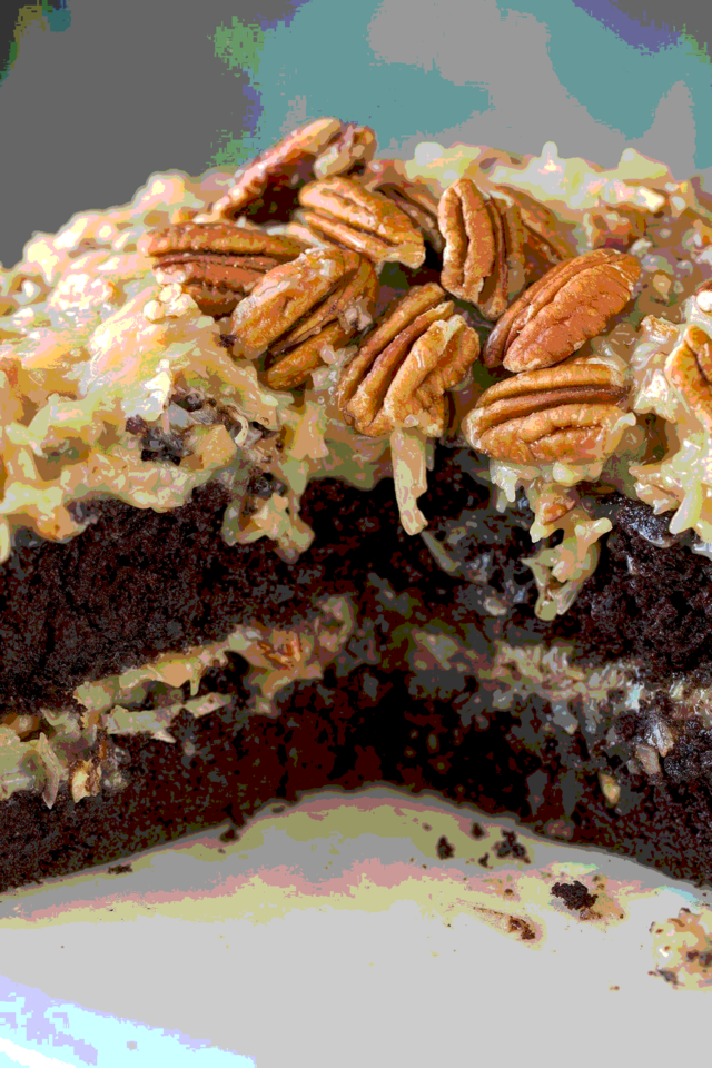 closeup shot of a coconut chocolate cake